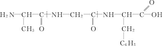 即可得单体的结构简式为