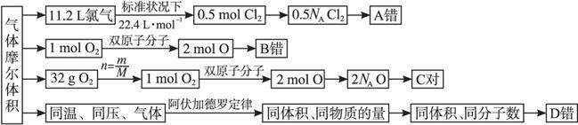 (3)物质的量是一个基本物理量